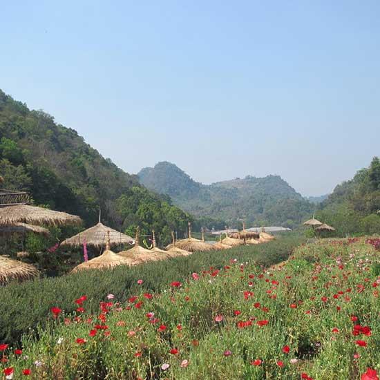 Ang-Khang-image